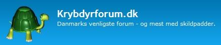 krybdyrforum